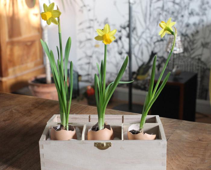 Déco de Pâques fleurie